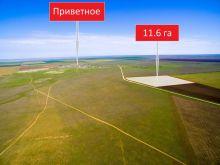 Продается земельный участок 11.6 га 0.5 км от с. Приветное