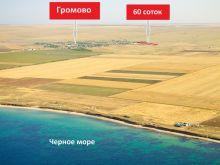 Продается земельный участок 60 соток, с. Громово, госакты