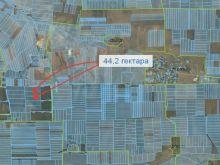 Продается земельный ПАЙ 44,2 гектара 6 км от с. Новоульяновка