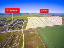 Продается земельный участок 120 га, с. Кузнецкое, госакты
