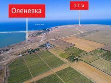 Продается перспективный участок 5, 7 Га в с. Оленевка